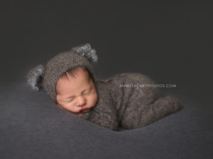 sleeping baby koala bear